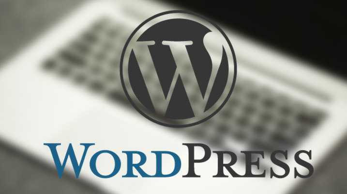 3 Reasons Why I Use WordPress To Create Blogs & Websites